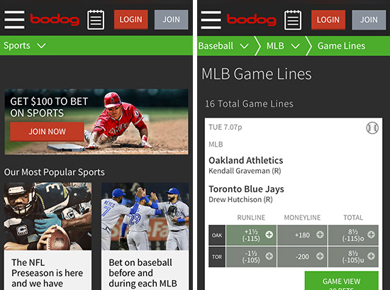Bodog Mobile Betting