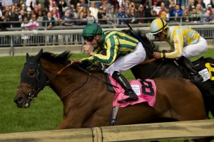 Canadian International Stakes Race